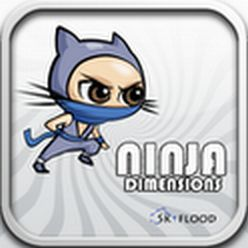 Ninja Izmēri