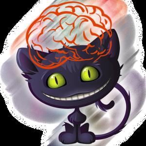 Edző memória! Brain tréner