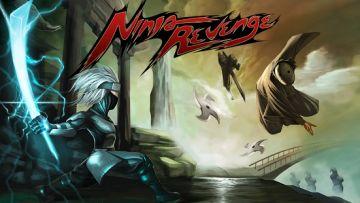 Ninja kerštas