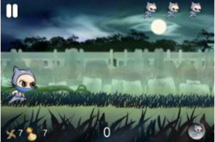 Ninja Dimensioni