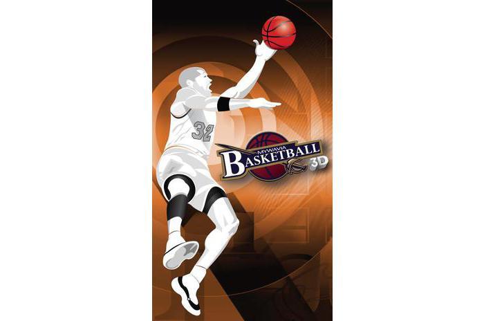 Basket Giochi - Frenzy 3D